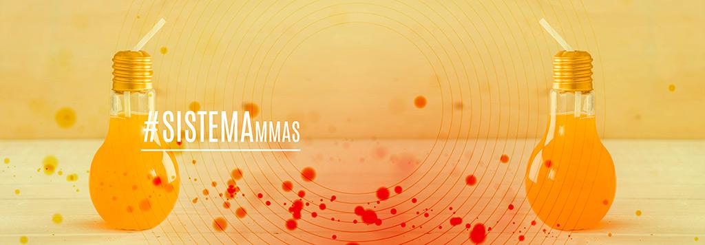 El Sistema MMAS (Micro Marketing Analysis System) es un modelo de negocio que, a través de la comparación de los Datos de las Compañías y los Datos de Mercado del Censo de MMAS